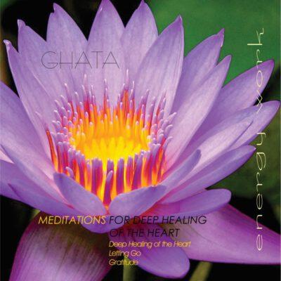 Deep Healing of the Heart_web (Medium)